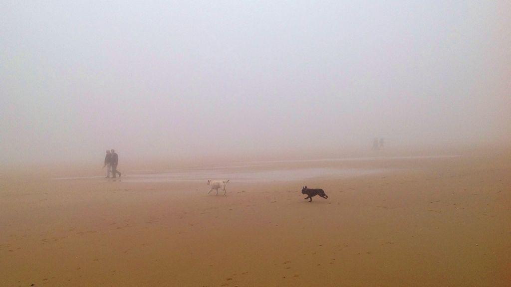 sardinero-niebla