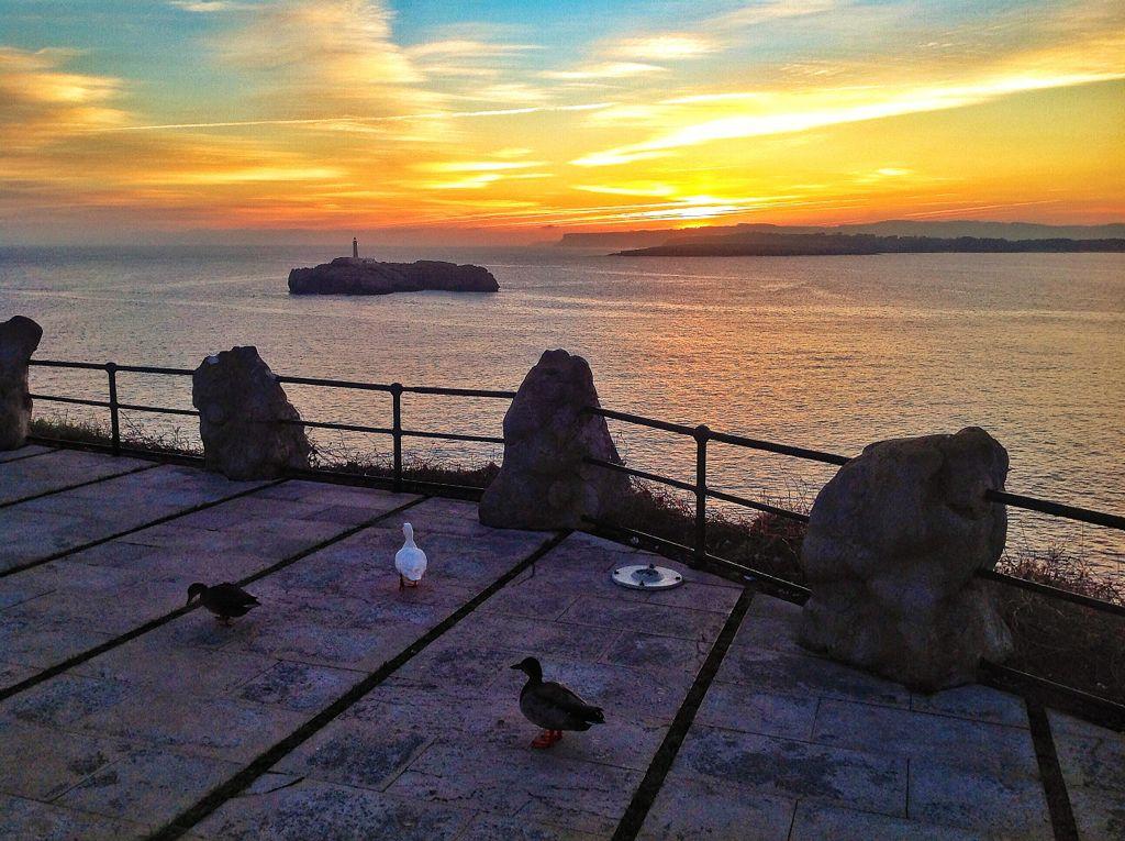 patos-amanecer-isla-mouro