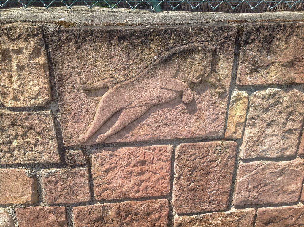 mortera-leon