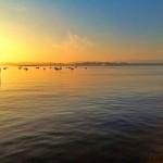 Dorada bahía