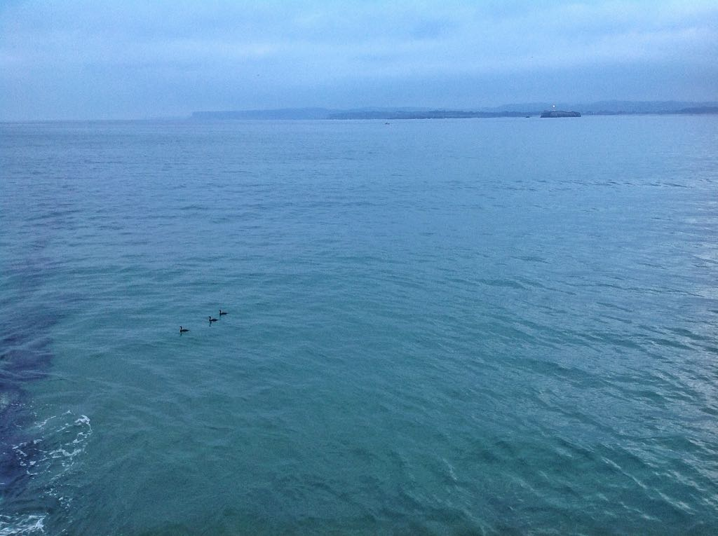 isla-mouro-patos