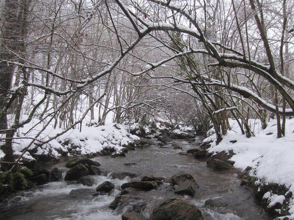 nieve-cascadas-lamina