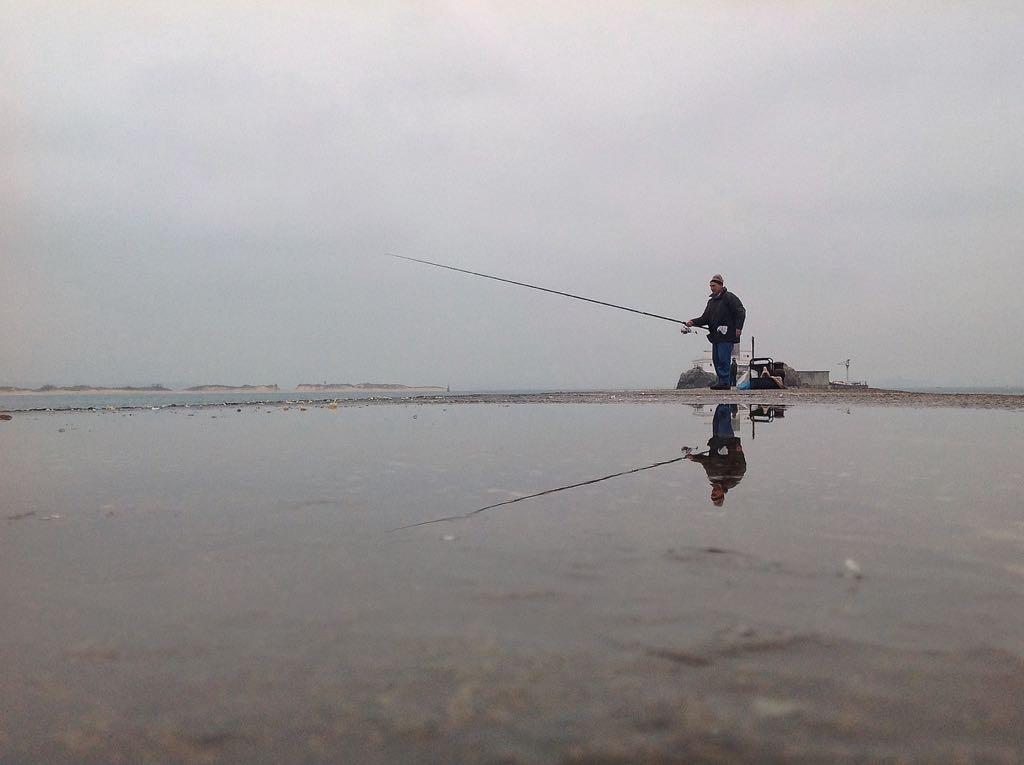 pesca-grises-bahia-santander