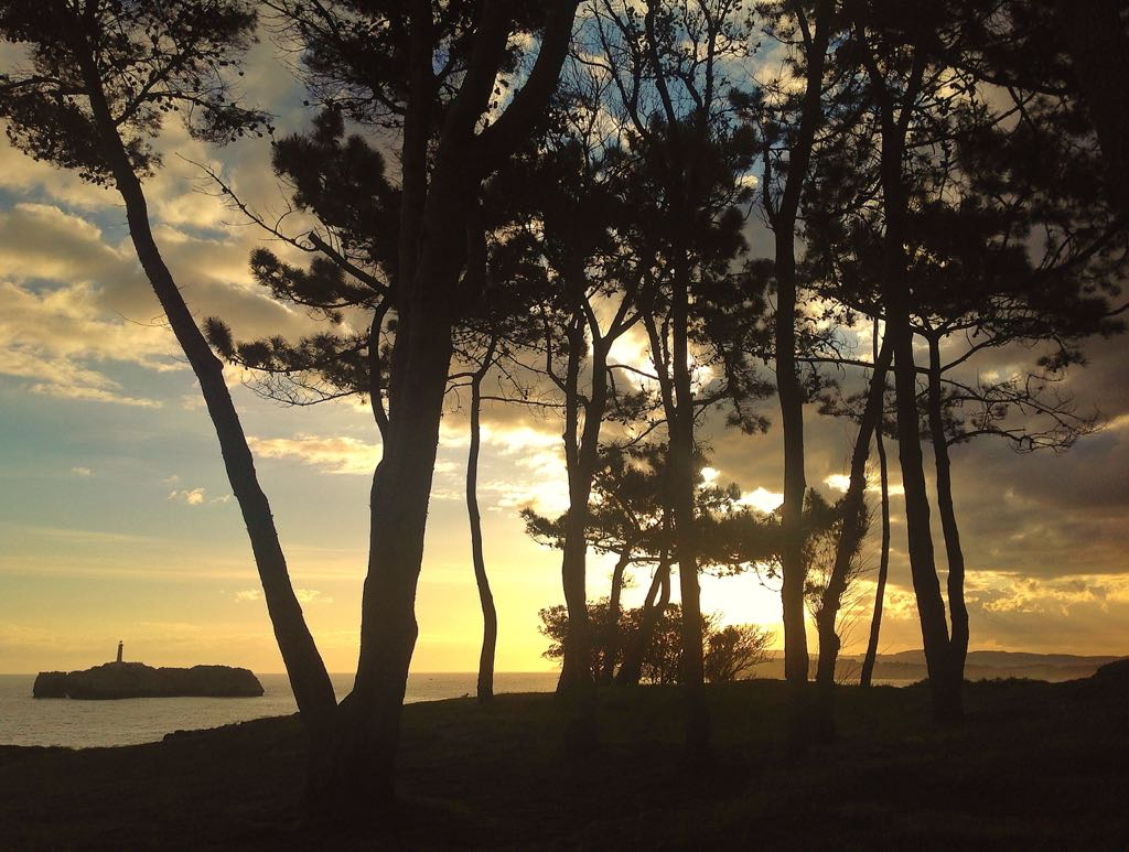 amanecer-pinar-magdalena
