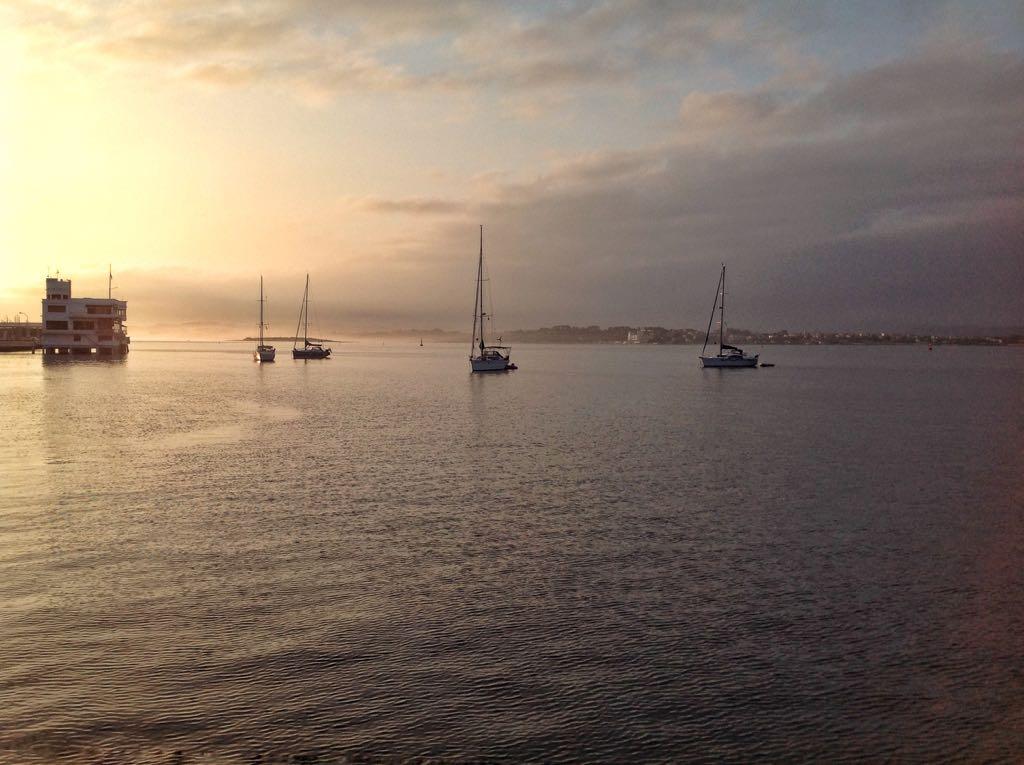 bahia-boyas-veleros-verano