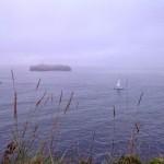 Horizonte cercano. Amanecer con niebla