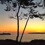 Tres postales de un amanecer desde la Magdalena