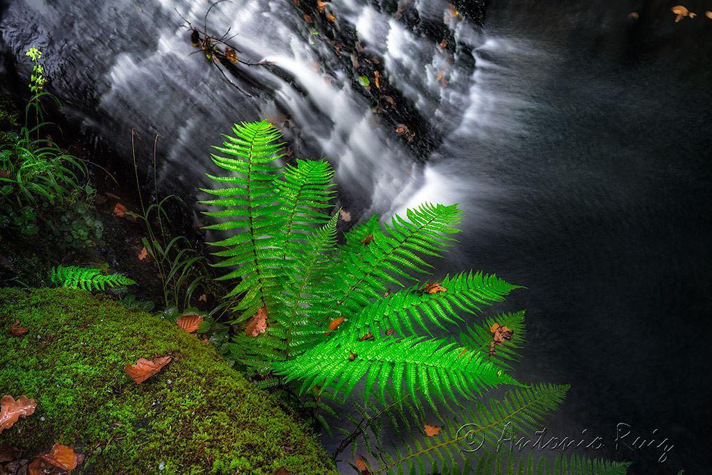 cantabria-cascadas-viana