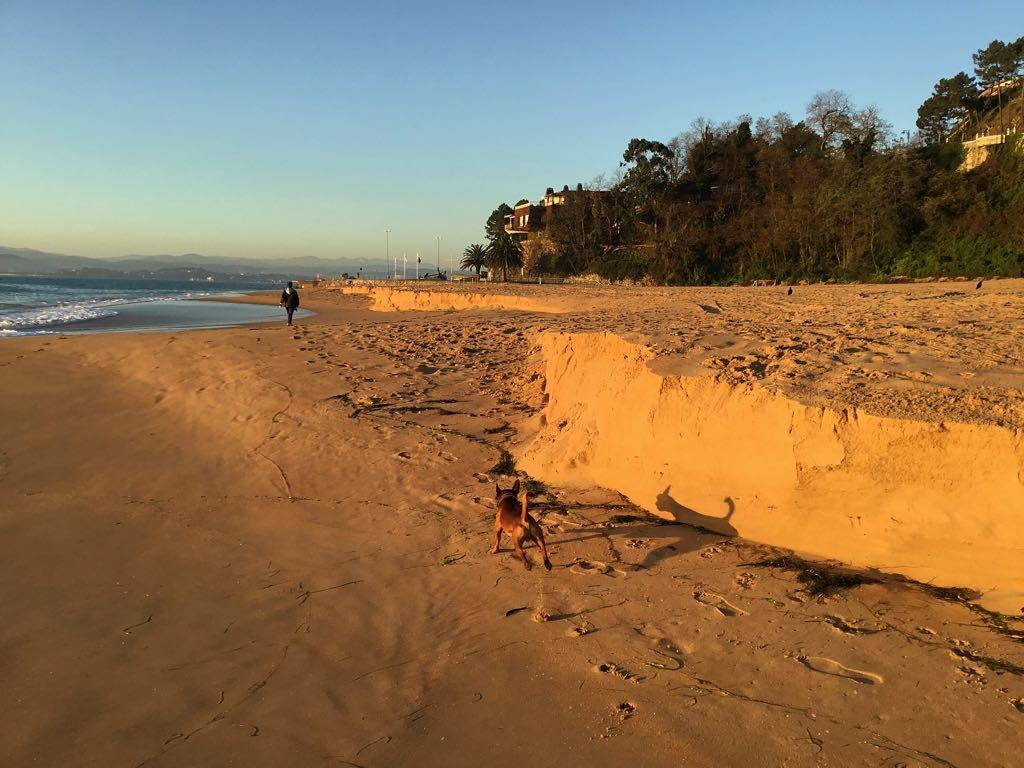 arena-peligros-santander