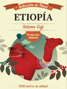 etiopia-cafe-dromedario