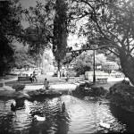 Una estampa romántica de los antiguos jardines de Pereda
