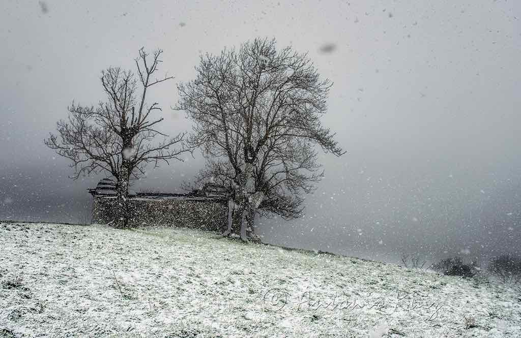 caracol-cantabria-nieve-antonio-ruiz