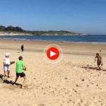 La vida en Santander: Una mañana en la Segunda del Sardinero