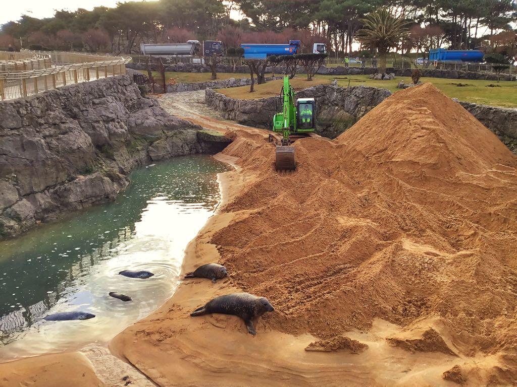 recinto-focas-arena-santander