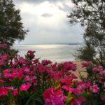 Último día de un mayo florido