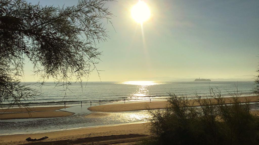 playa-sardinero-paseo