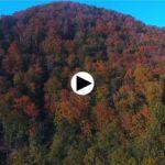 Colores de otoño en Cantabria