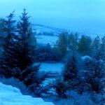 Nieve en calma. Olea