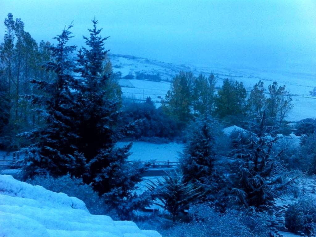 nieve-camesa