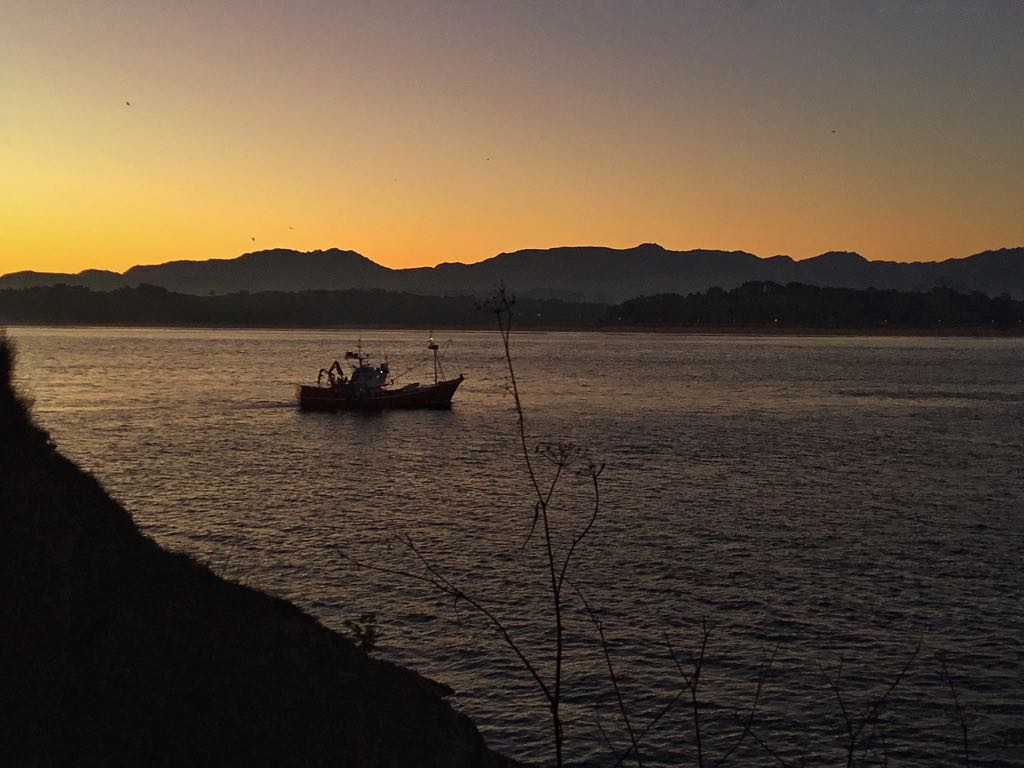 pesca-puerto-santander