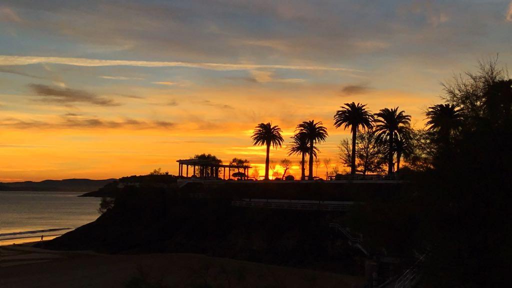 piquio-palmeras-amanecer