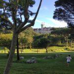Los jardines y la playa del palacio están hechos para el deporte mañanero