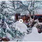 Vaya nevada que ha caído en Olea el primer día de primavera