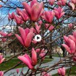 Un guiño a la primavera