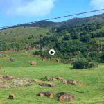 ¿Vienes a dar una vuelta por Cantabria?