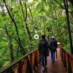 Un verano en el occidente de Cantabria