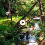 De paseo por el parque de la Viesca