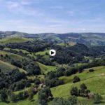 Pueblos de Cantabria: Campillo en un día increíble de luz y verdor
