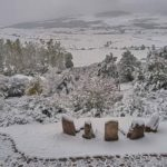 La primera nevada de la temporada en Campoo. Así está ahora Olea