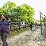 Slow Food Cantabria va de granja en granja para salvar los alimentos con raíz y sabor cántabro