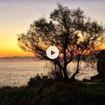 Compartiendo la energía de las primeras luces del alba