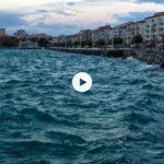 Domingo de surada en la bahía