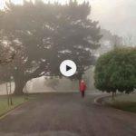 Amanecer en la niebla