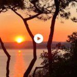 Sale el sol entre pinos y Cantábrico