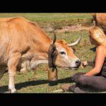 Dicen: la fuerza y el alma de la gente rural de Cantabria