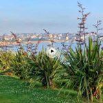 Entre los árboles de la península de la Magdalena y con vistas al mar
