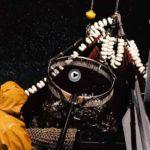 Patrón, la historia de un oficio. Pesca de la anchoa a cerco en Santoña