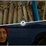 Vaya pesca que han hecho esta noche Jesús y Basilio en la bahía de Santander