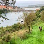Por las sendas escondidas de San Vicente de la Barquera