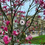 La primavera se asoma a los jardines de Pereda