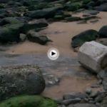 Con lo que nos hemos encontrado hoy en la playa de los Molinucos… rocas sólo rocas
