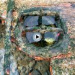 Esas cosas que te encuentras en las bajamares del Sardinero vistas al detalle