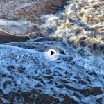 Martes… mirando a las olas