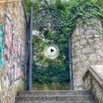 Mira lo que nos hemos encontrado hoy al atravesar esta puerta… Un verdadero paraíso
