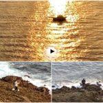 Ver salir el sol pescando en la costa de la península de la Magdalena