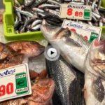 A estos precios está hoy miércoles el pescado en el mercado de la Esperanza